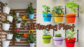 Wall Hanging Plants Design Ideas For Your Home Decoration Best Home Design Video